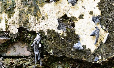 schimmels op muur